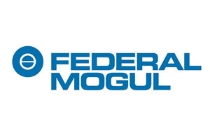 Federal, Mogul, Logo, drive shafts manufacturers, powertrain limited warranty, bearings replacement, power trains subway, driveline components company